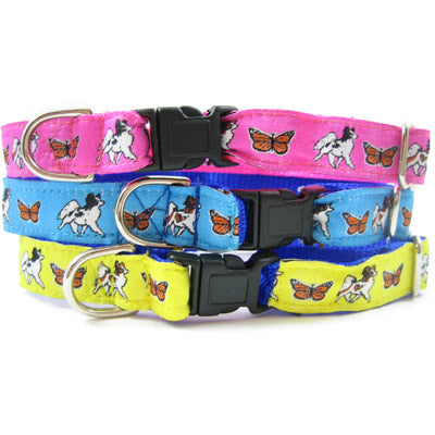 Papillon Dog Collar or Leash