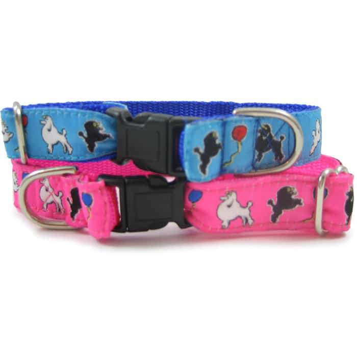 Toy Poodle Dog Collar or Leash