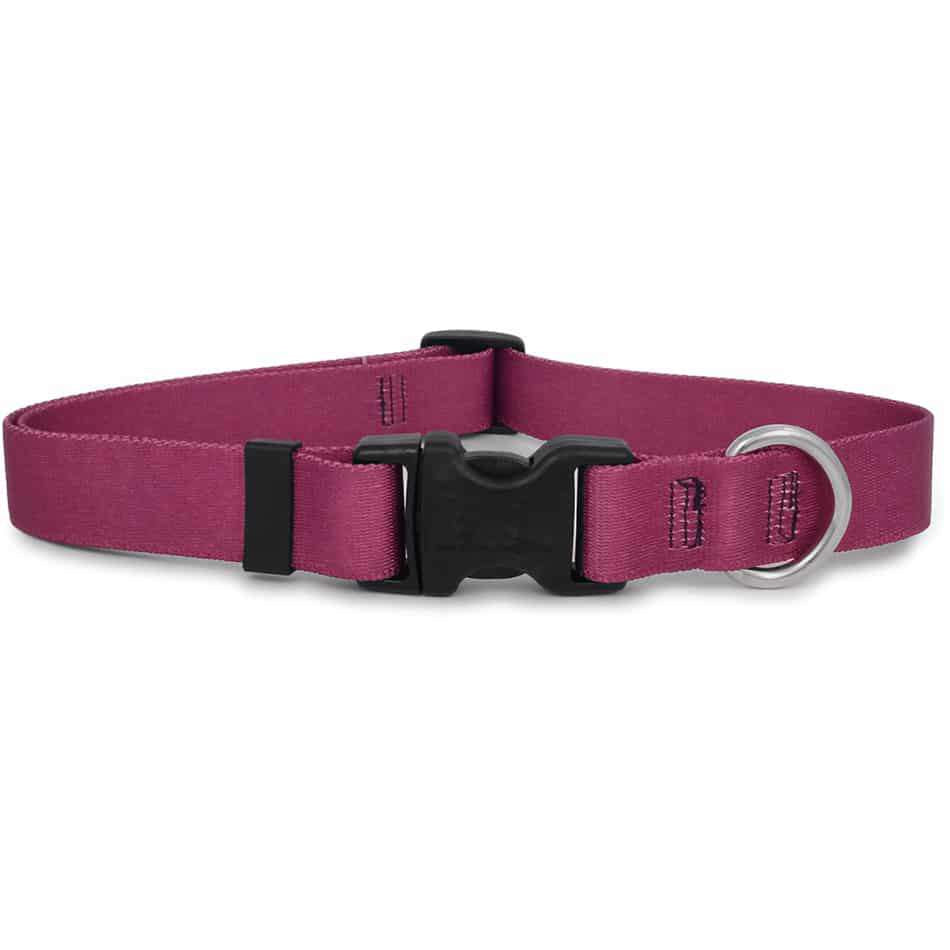 Solid Plum Dog Collar- adjustable or martingale
