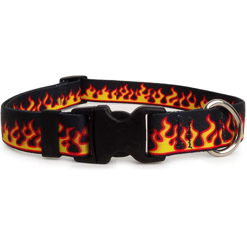Red Flames Dog Collar