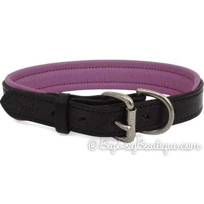 Padded Leather Dog Collar- black with purple padding