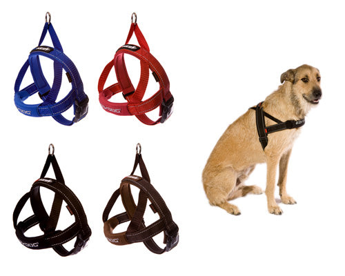 EzyDog Harness