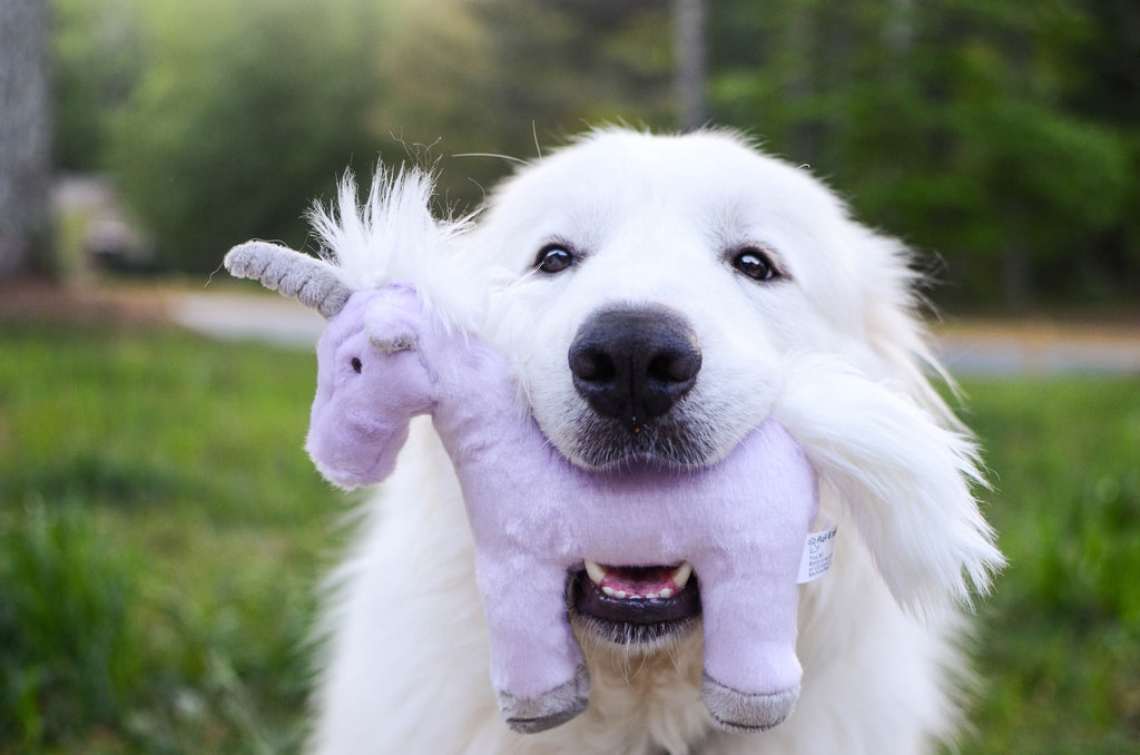 Fluff & Tuff Unicorn Plush Dog Toy