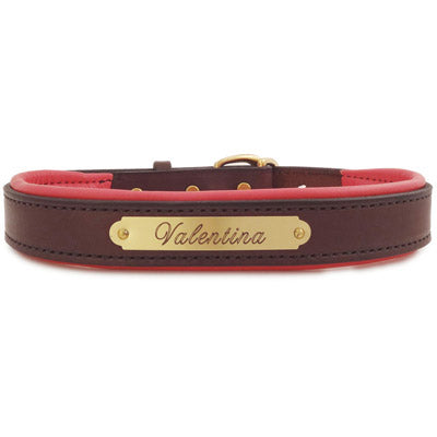 Engraved Padded Leather Dog Collar- brown with colorful padding