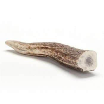 Antler Bones for Dogs