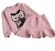 Load image into Gallery viewer, Pin-tuck Owl Sweater Skirt Set