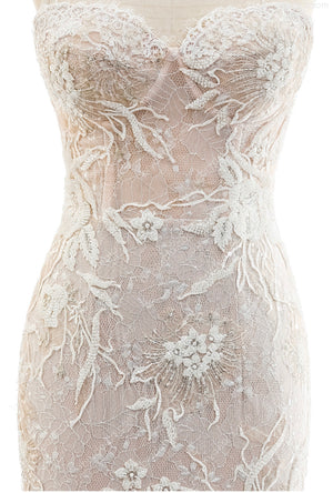 Lace Mermaid Fitted Gown
