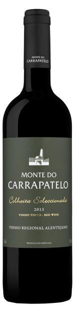 Monte do Carrapatelo - Rot 2015