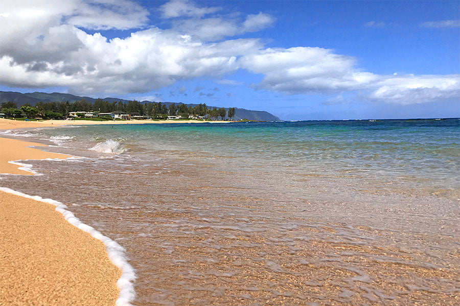 Ali'i Beach in Haleiwa