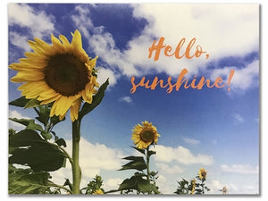 Hello Sunshine (Pack of 4)