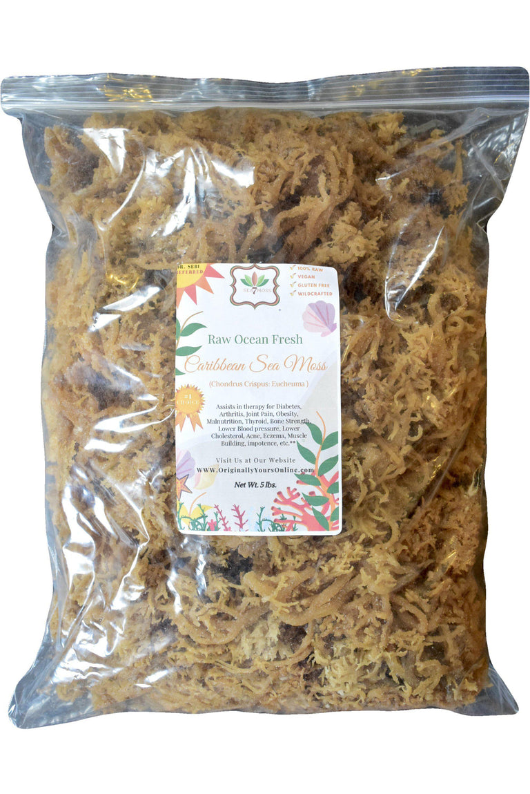 A plate of Sea Moss. This is a 55 lb. bag for sale at Originallyyoursonline.com  Eucheuma Cottoni, Chondrus Crispus