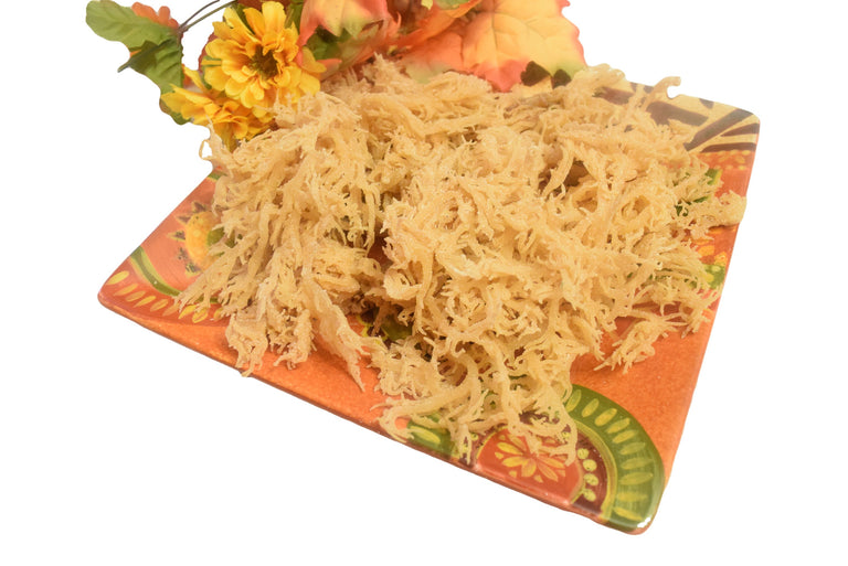 A plate of Sea Moss. This is a 50 lb. bag for sale at Originallyyoursonline.com  Eucheuma Cottoni, Chondrus Crispus