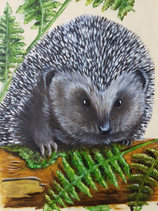 Woodland life: Hedgehog Hello