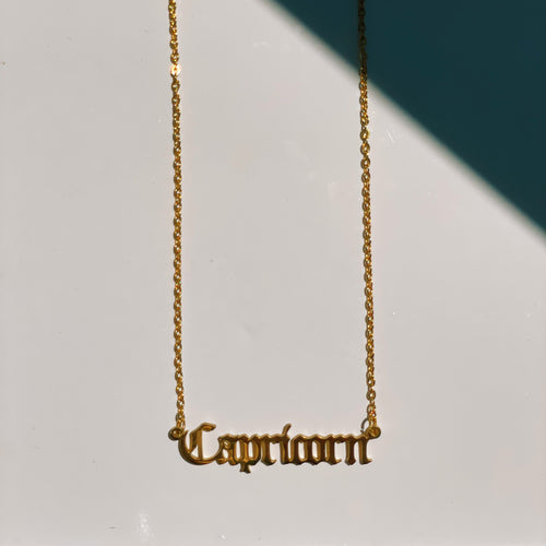 Capricorn Zodiac Nameplate Necklace - CELESTE SOL Jewelry