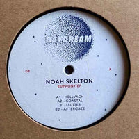 Noah Skelton ‎– Euphony EP - Daydream France ‎– DAYDREAM008