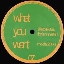 Silat Beksi & Florian Meffert ‎– Model 2000 - What You Want ‎– wow07