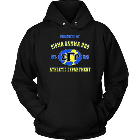 Image of Sigma Gamma Rho Varsity Hoodie - Unique Greek Store