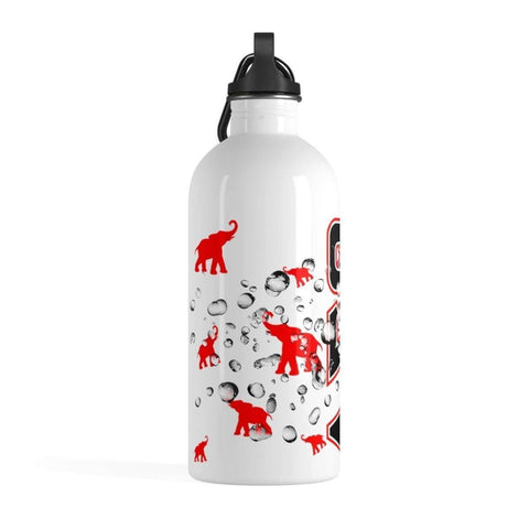 Delta Sigma Theta Stainless Steel Water Bottle - Unique Greek Store