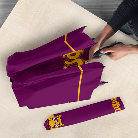 Image of Omega Psi Phi Fraternity Umbrella