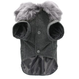 Winter Cat Fashion Jacket With Woolen Fur Collar Front