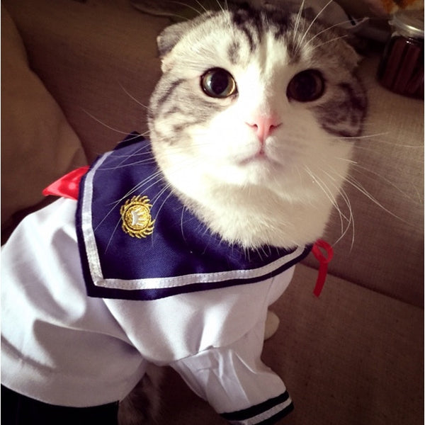 Funny Cat Fashion Sailor Costume