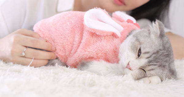100% Cotton Snuggly Cat Fashion Pink Pajamas