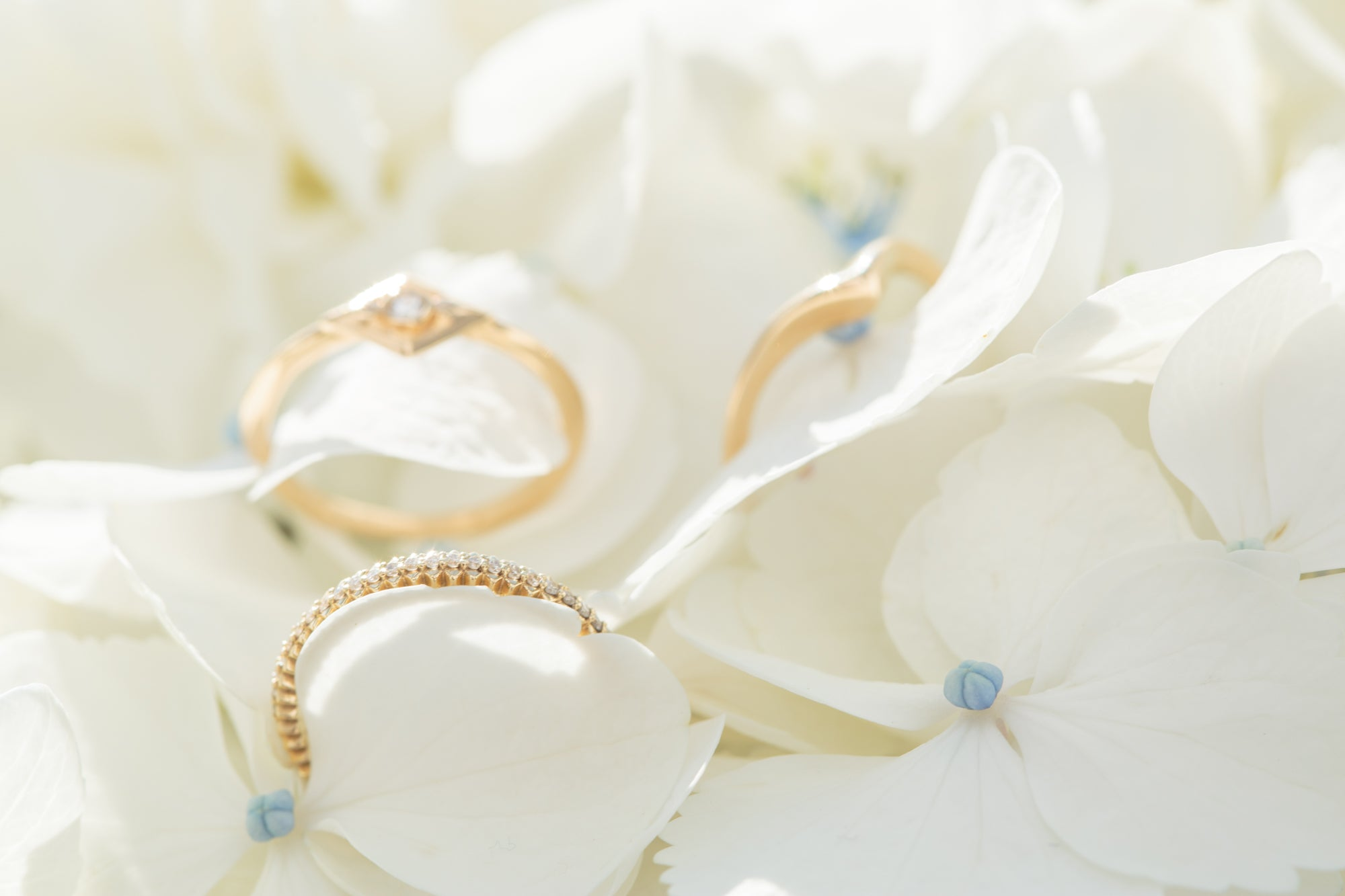 14k and 18k gold rings