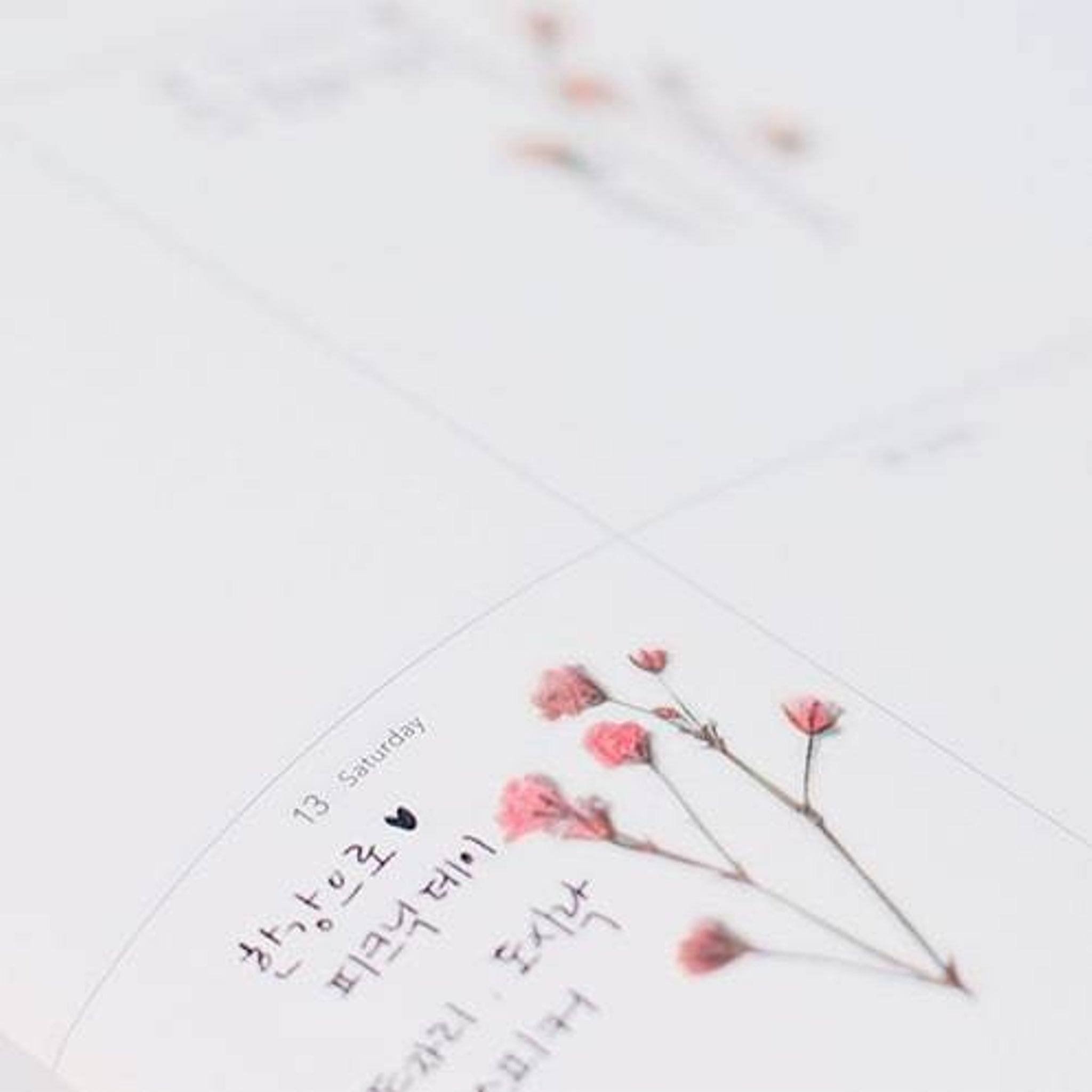 Appree Pressed Flower Sticker Gypsophila