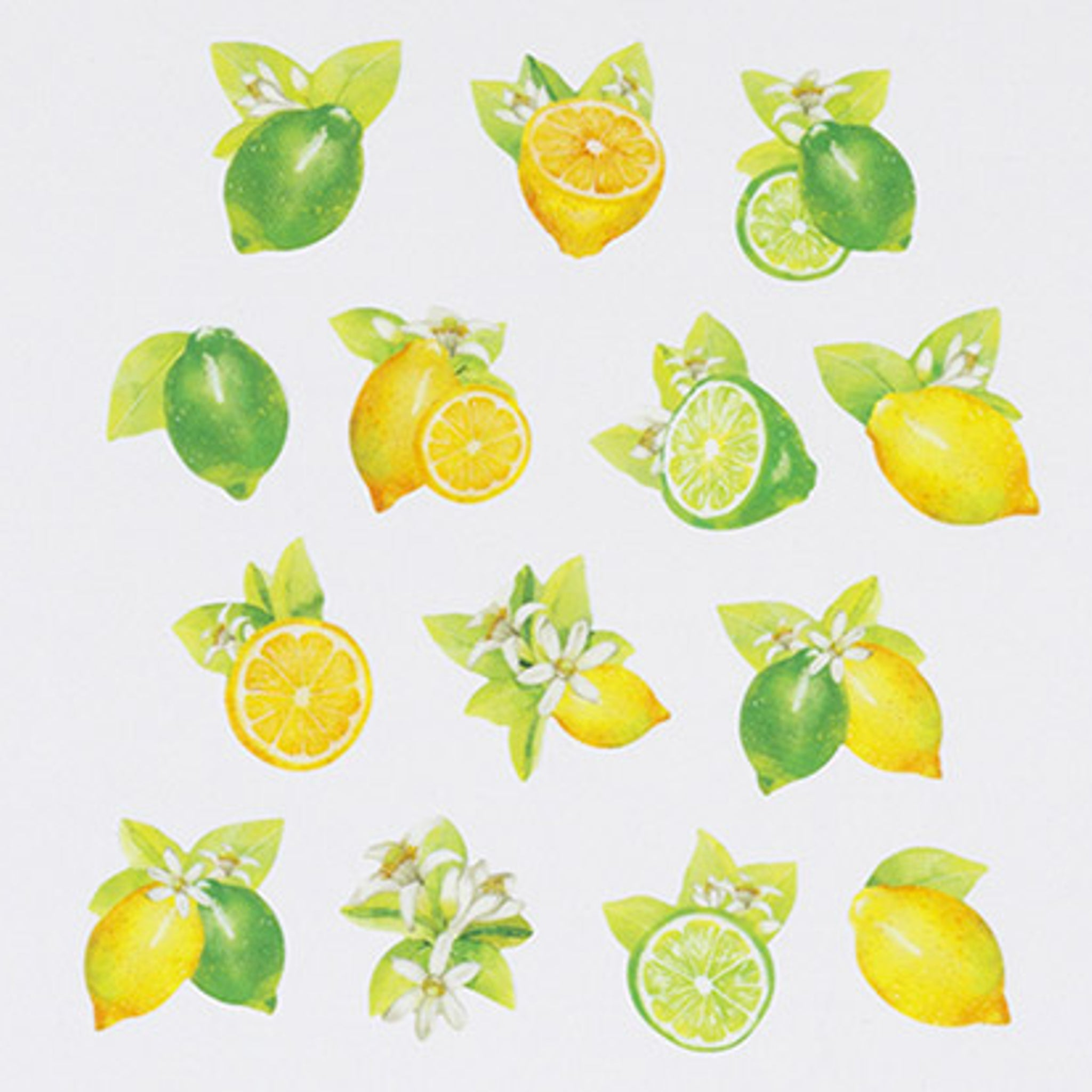 Bande Lemon and Lime Washi Roll Sticker
