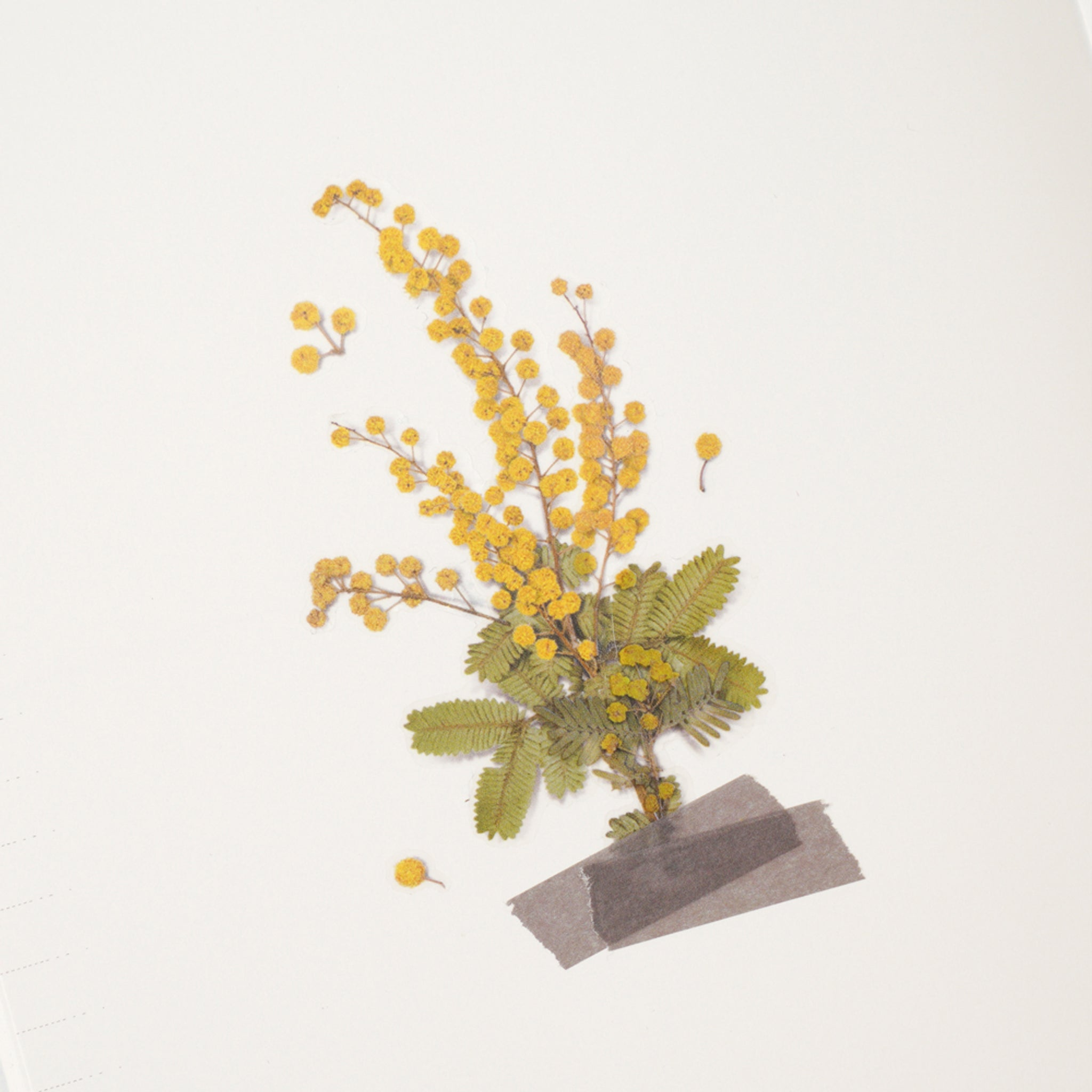 Appree Pressed Flower Sticker Mimosa