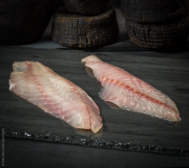 Fresh Rock Fish Fillets Skin Off Seafood