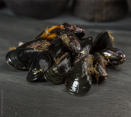 Fresh Black Mussels Shellfish Seafood