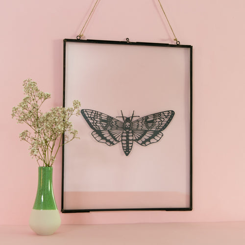 Death's-head hawkmoth Papercut