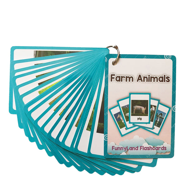 Farm, Sea Animal Flash Cards