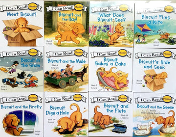 Biscuit Series Phonics English Picture Books (24 piece set)