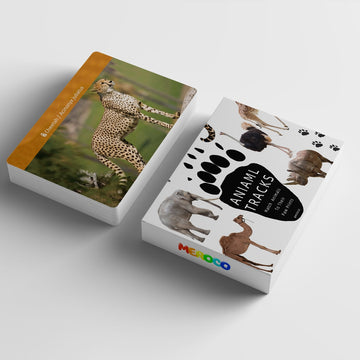 Animal Foot Print Cards.
