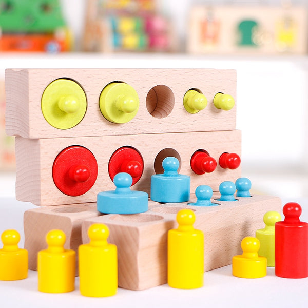 Maria Montessori Cylinder Blocks
