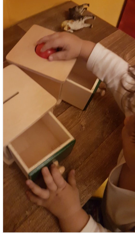 Object Permanence Montessori Game for Toddlers