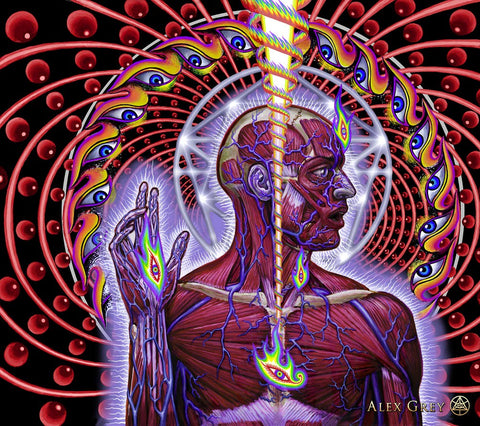 ic:Lateralus by Alex Grey