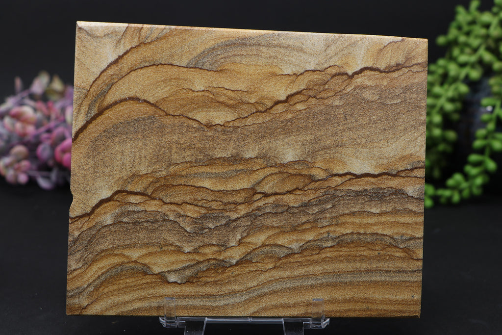 Picture Jasper Slab DC819