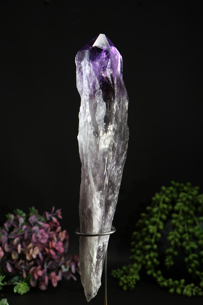 "10"" Amethyst Root with Hollandite"