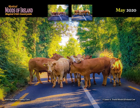 Image of 2020 Magical Irish Countryside Wall Calendar Calendar Moods of Ireland