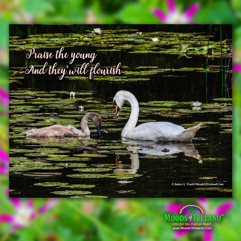 Image of 2021 Irish Blessings & Proverbs Wall Calendar Calendar Moods of Ireland