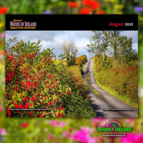 2021 Magical Irish Countryside Wall Calendar - James A. Truett - Moods of Ireland - Irish Art