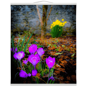 Wall Hanging - Rebirth of Irish Spring Wildflowers - James A. Truett - Moods of Ireland - Irish Art
