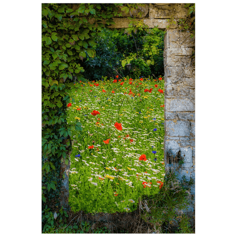 Print - Magical Wildflower Meadow in County Clare Poster Print Moods of Ireland 12x18 inch