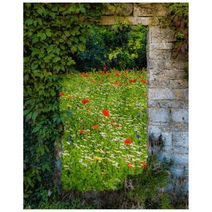 Print - Magical Wildflower Meadow in County Clare Poster Print Moods of Ireland 16x20 inch