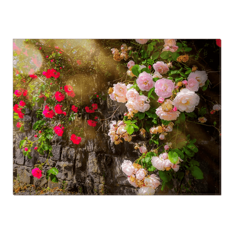 Image of Canvas Wrap - Irish Roses Canvas Wrap Moods of Ireland 18x24 inch