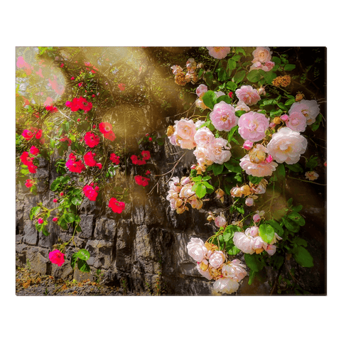 Image of Canvas Wrap - Irish Roses Canvas Wrap Moods of Ireland 24x30 inch
