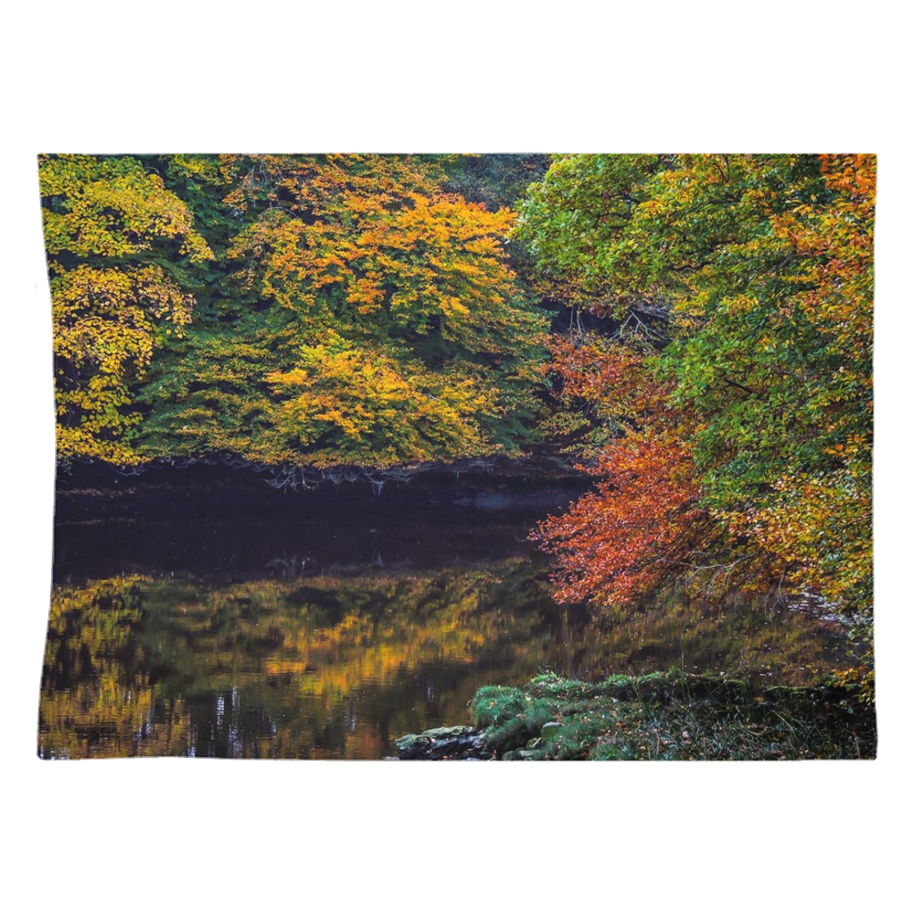 Tapestry - Autumn on Ireland's Cloon River
